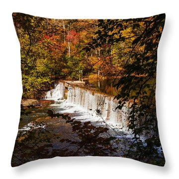 Looking Through Autumn Trees On To Waterfalls Fine Art Prints As Gift For The Holidays  Throw Pillow by Jerry Cowart