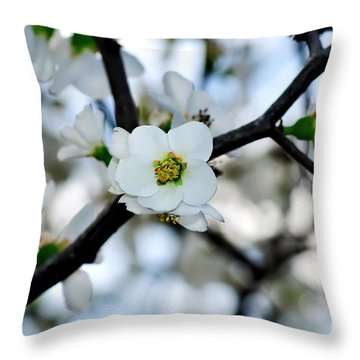 Looking Through The Blossoms Throw Pillow by Kaye Menner