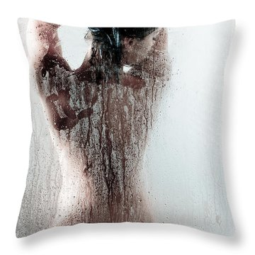 Looking Through The Glass Throw Pillow