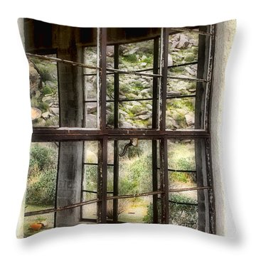 Looking Through The Window By Diana Sainz Throw Pillow