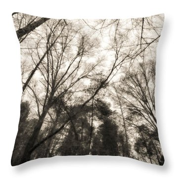 Looking Up At Trees Throw Pillow by J Riley Johnson