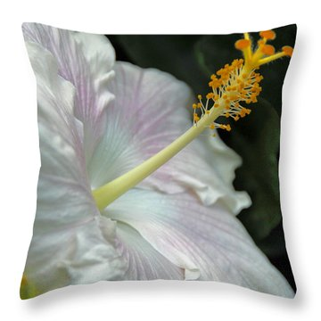 Looking Up Throw Pillow by Cindy Manero