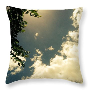Throw Pillow featuring the photograph Looking Up II by Alohi Fujimoto