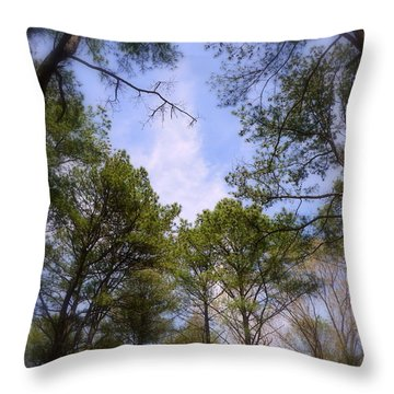 Throw Pillow featuring the photograph Looking Up by Jim Whalen