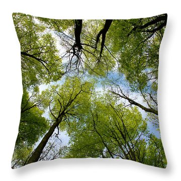Throw Pillow featuring the digital art Looking Up by Ron Harpham