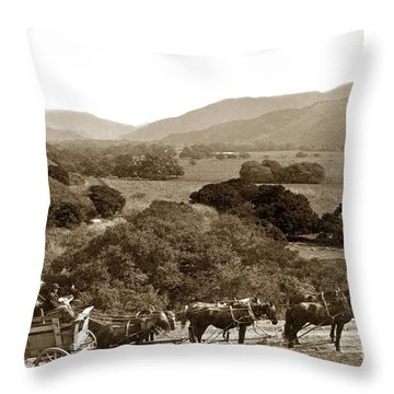Looking Up The Carmel Valley California Circa 1880 Throw Pillow