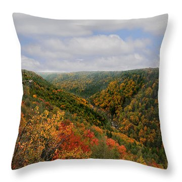 Looking Upriver At Blackwater River Gorge In Fall From Pendleton Point Throw Pillow by Dan Friend