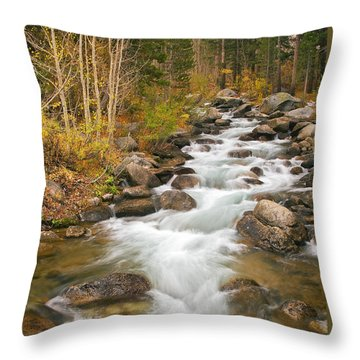 Looking Upstream Throw Pillow by Alice Cahill