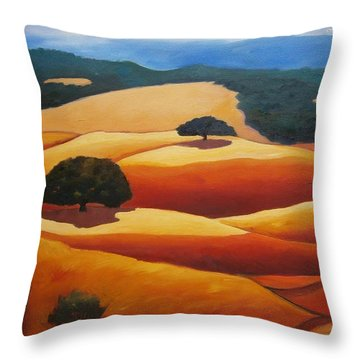 Looking West Throw Pillow by Gary Coleman