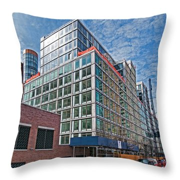 Looking West Throw Pillow by Steve Sahm