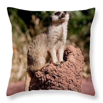 Lookout Post Throw Pillow by Michelle Wrighton