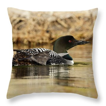 Loon 10 Throw Pillow by Steven Clipperton