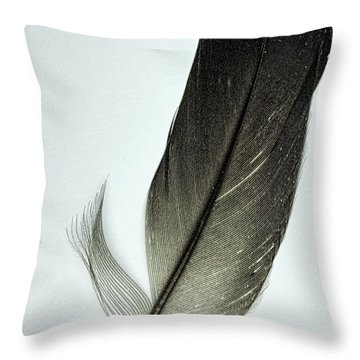 Loon Feather Throw Pillow by John Crothers
