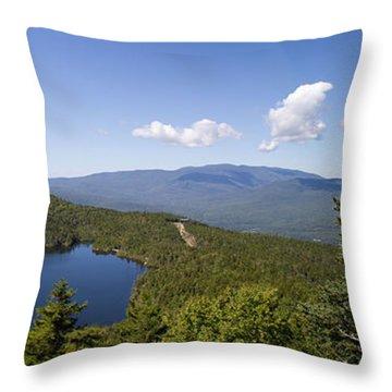 Loon Mountain Throw Pillow
