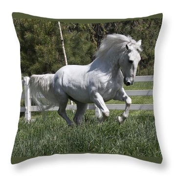 Throw Pillow featuring the photograph Loose In The Paddock 5594 by Wes and Dotty Weber