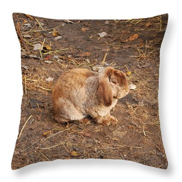 Throw Pillow featuring the photograph Lop Eared Bunny by Bob Sample
