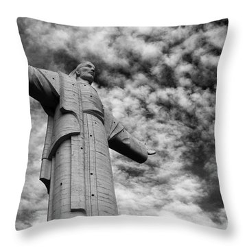 Lord Of The Skies 3 Throw Pillow by James Brunker