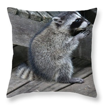 Lord Thank You For This Day Throw Pillow