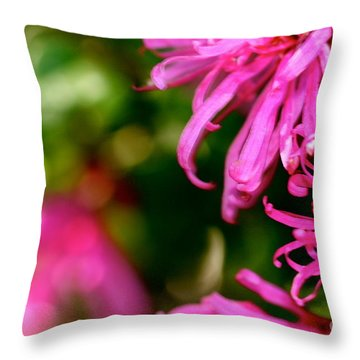 Loropetalum Study 1 Throw Pillow by Cathy Dee Janes