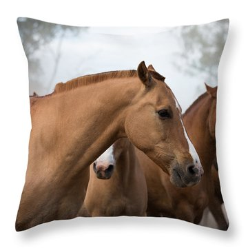 Los Caballos De La Estancia Throw Pillow