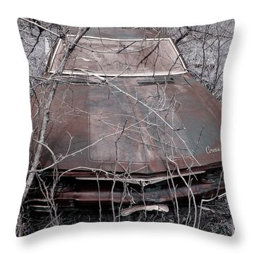 Throw Pillow featuring the photograph Lost Corvair Adjustment  by Christopher McKenzie
