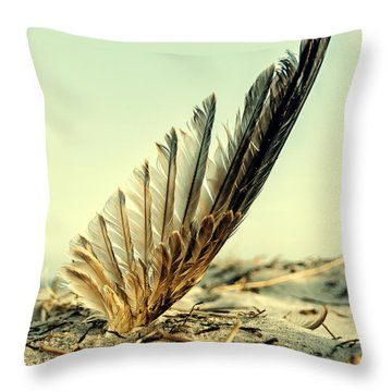 Lost Feather At The Beach Throw Pillow