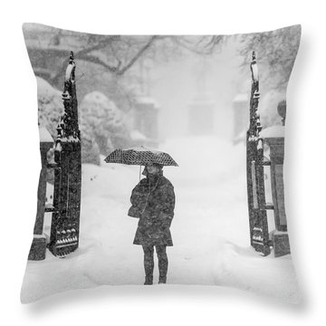 Lost In A Storm Throw Pillow