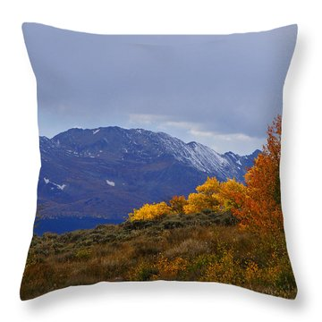 Lost In Autumn Throw Pillow by Jeremy Rhoades