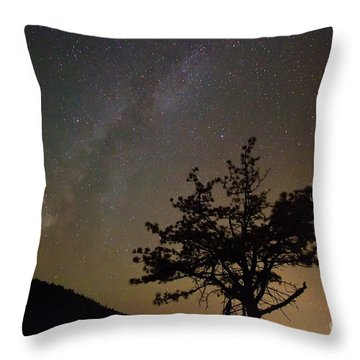 Lost In The Night Throw Pillow by James BO  Insogna
