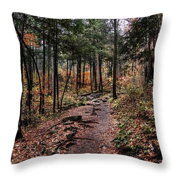 Throw Pillow featuring the photograph Lost In Thought On The Blue Ridge Parkway Trail by Debbie Green