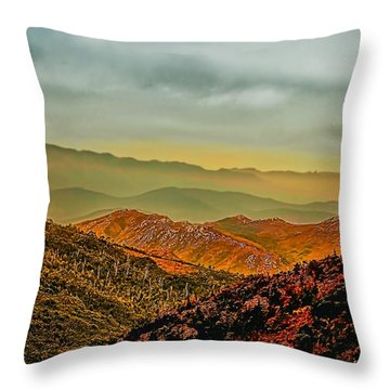 Throw Pillow featuring the photograph Lost In Time by Wallaroo Images
