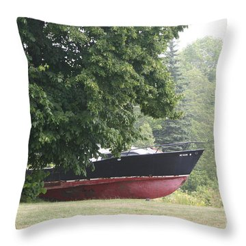 Lost Its Way In The Fog Throw Pillow