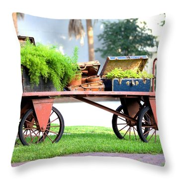 Throw Pillow featuring the photograph Lost Luggage by Gordon Elwell