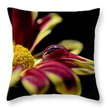 Throw Pillow featuring the photograph Lost On A Petal by Michelle Meenawong