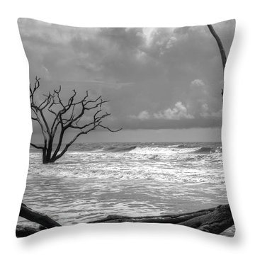 Throw Pillow featuring the photograph Lost To The Sea by Michael Colgate