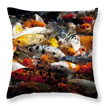 Lots Of Hungry Koi  Throw Pillow by Wilma  Birdwell