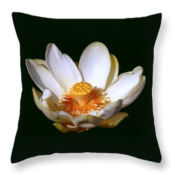 Throw Pillow featuring the photograph Lotus Blossom #2 by Jim Whalen