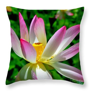 Lotus Blossom Throw Pillow by Mary Deal
