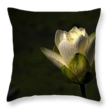 Lotus Blossom Throw Pillow by Travis Burgess