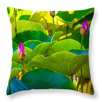 Lotus Garden Throw Pillow