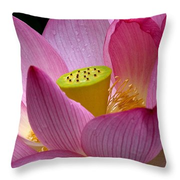 Lotus-center Of Being II Dl030 Throw Pillow by Gerry Gantt