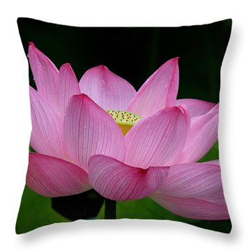 Lotus-center Of Being IIi Dl033 Throw Pillow