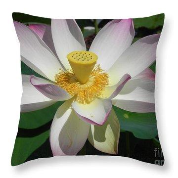 Throw Pillow featuring the photograph Lotus Flower by Chrisann Ellis