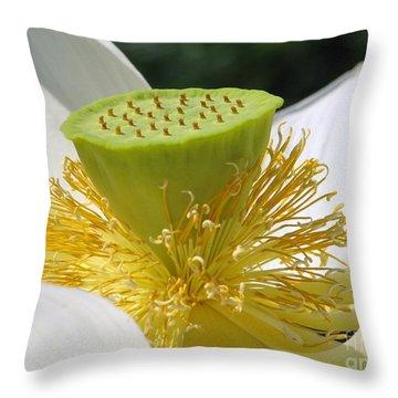 Lotus Flower With Pod Throw Pillow by Eva Kaufman