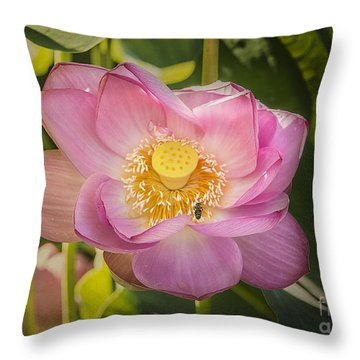 Lotus In The Pink Throw Pillow