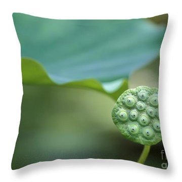 Lotus Leaf And A Seed Pod Throw Pillow by Sabrina L Ryan