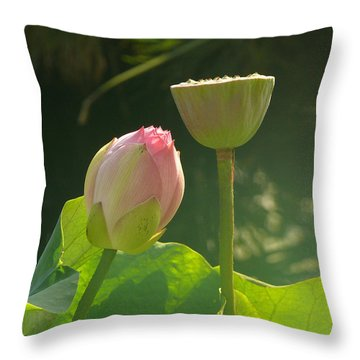 Throw Pillow featuring the photograph Lotus Soft by Evelyn Tambour
