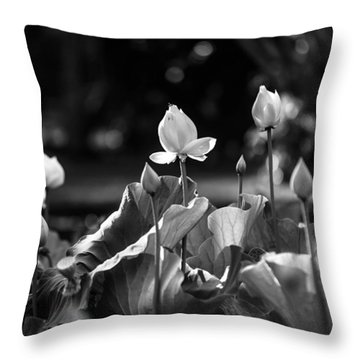 Lotuses In The Pond. Black And White Throw Pillow by Jenny Rainbow