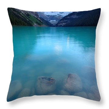 Throw Pillow featuring the photograph Louis With An E  by David Andersen