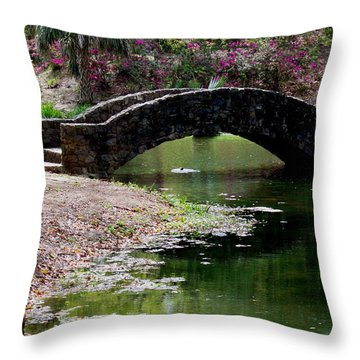 Louisiana Beauty Throw Pillow by Robin Lewis